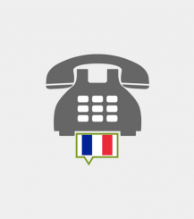 Pack 50 virtual numbers from France